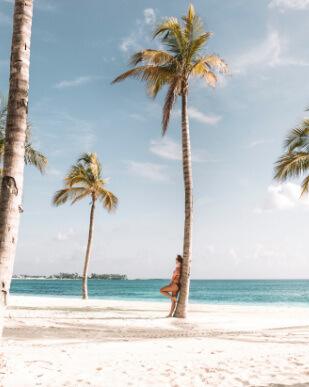 A todo el mundo le gustaría poder disfrutar de las palmeras y playas de las Bahamas. Por esa razón, nuestro buscador de hoteles baratos te ofrece los mejores alojamientos con los mejores descuentos para que vivas la experiencia que te mereces.